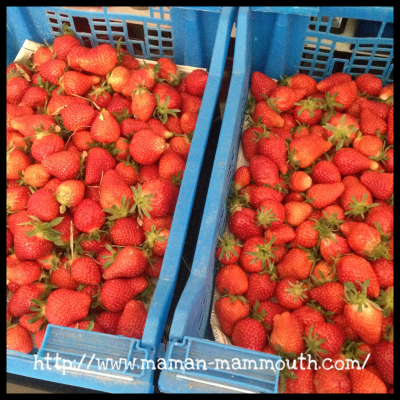 Des fraises à toutes les sauces!