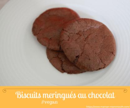 recette biscuits meringués au chocolat vegan