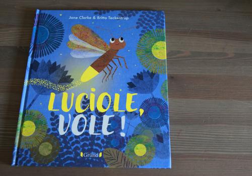 Album jeunesse Luciole vole ! aux éditions Grund