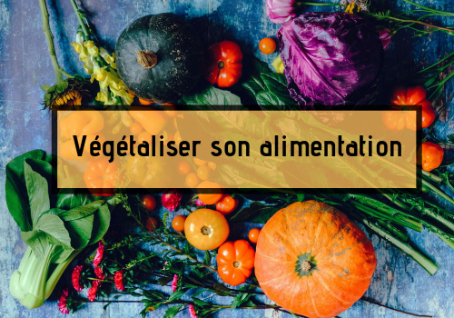 Conseils pour végétaliser son alimentation