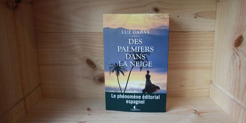 """Chronique du roman """"Des palmers dans la neige"""""""